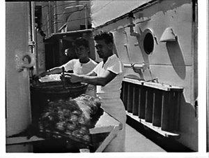RAN, RNZN and RN exercise, Tasman Sea and Auckland: cooks Vivian Rapley-Tuakau and Robert Wood of Devonport, Auckland prepare vegetables on board Royalist