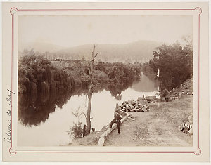 The Wharf, Paterson ; On the Paterson River ; Gresford Crossing, Paterson River / photographed by Kerry & Co. ca. 1895