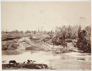 On the Paterson River ; Crossing place Paterson River / photographed by J. Paine, ca. 1875