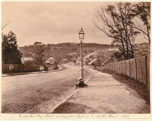 Rushcutters Bay Road, on way from Sydney to South Head, 1877