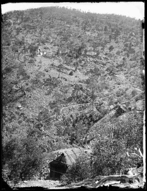 Gold mines, northern end of Nuggetty Gully, looking north-west towards the eastern slopes of Prince Alfred Hill, Hill End