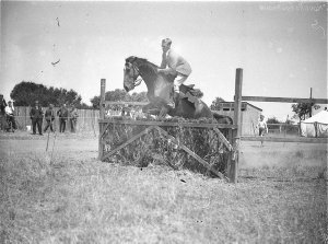 A male rider clears the brush hurdle