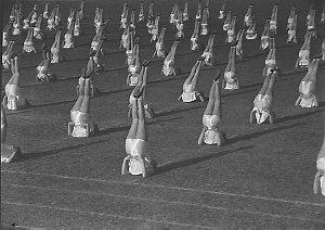 Gym girls display