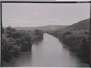 Paterson River at Paterson