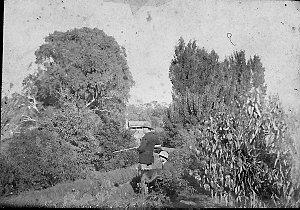 Shooting birds in the garden of Moona - Deniliquin, NSW