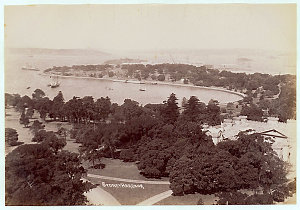 Sydney Harbour showing Farm Cove [and Botanical Gardens, looking east]