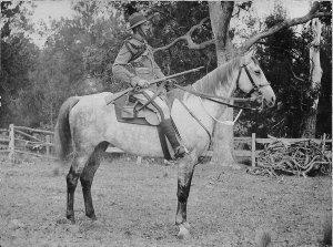 "Light Horse soldier on ""Havelock"" - Bega, NSW"