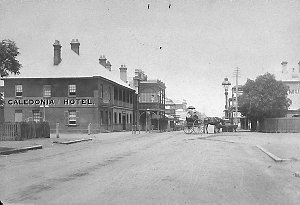 View of town. George Street from Post Office - Singleton, NSW