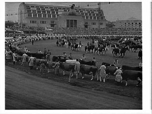 Grand Parade, Royal Easter Show, 1960, in front of the Commemorative Pavilion