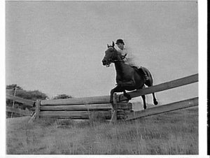 Cross country horseriding event, Royal Easter Show, 1961, (in Centennial Park ?), Sydney