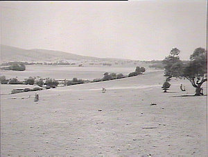 Panorama. Kaolin Gully near Duntroon Boundary