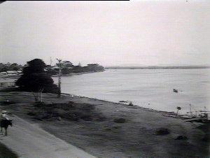 View at Forster showing Wallis Lake