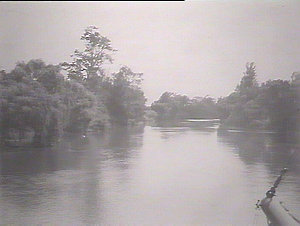 On the Paterson River