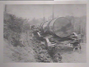 Log in truck (log during transport)