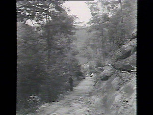 Track from Berowra Platform, 92 chains from road, descent 596 ft.
