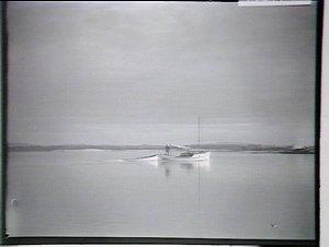 Wallis Lake at Forster