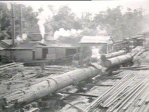 Logs for the mill: Briggs Mill, Briggsvale
