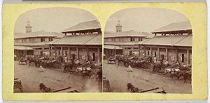 Stereographs of views in Sydney, Port Stephens, Raymond Terrace, Wellington and Forbes, ca.1865-1869 / Sir Hugh Dixson