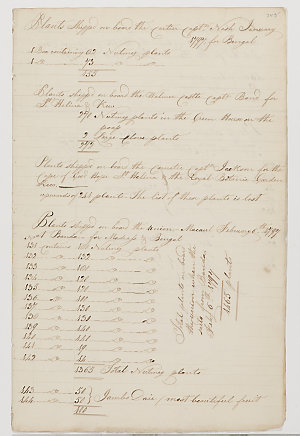 Series 16.20: Plants collected by Christopher Smith, January - September1797