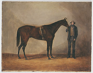 Welcome Jack [racehorse], 1853 / painted by Joseph Fowles