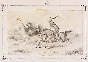 [Hunting the emu in Australia, 1850? / pencil sketch by an unknown artist]