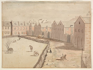 Stables of Lyons' Terrace, Macquarie St south, 1842 / John Rae