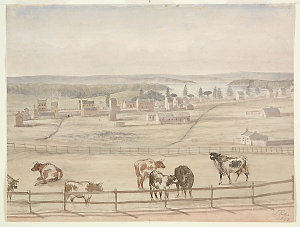 Item 02: A view of Woolloomooloo Bay in the old days. From Old South Head Road, 1842 / John Rae