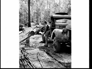 Champion tree-feller and axesman Vic Summers, Gympie