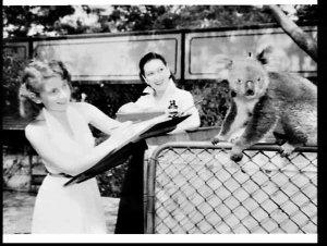 M.G.M. (Metro-Goldwyn Mayer ?) artists at Taronga Park Zoo, Sydney