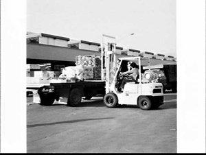Mitsubishi forklifts, Flemington Markets