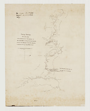 Tracing showing part of a map of the settlement of New South Wales including the new discovered country to the westward of the Blue Mountains in 1813 [cartographic material] / by George William Evans.