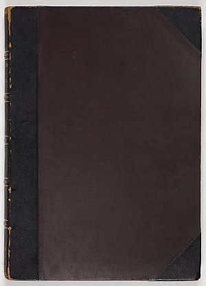 New South Wales. Colonial Secretary's Office - Correspondence, 1803-1810