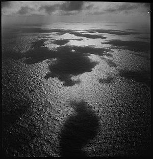 File 18: Over the Coral Sea on Catulina[?], 1942 / photographed by Max Dupain