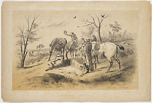Kangaroo hunting. No. 3 The Death, ca. 1860? / Samuel Thomas Gill, lithograph by Allen & Wigley