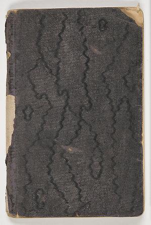 Item 03: Bertie McAdam Lowing, diary, 28 October 1917 to 9 September 1918