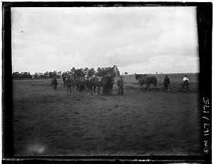 Series 04: [Hawkesbury Agricultural College : buildings, farm equipment and activities, ca. 1900-1950]