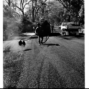 Sealing (tarring) the roads in the Frederick and Dural Streets area, Hornsby