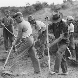 Gangs of men on relief work during the depression