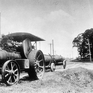 Steam traction engine hauling log, river end of Cameron Street - Wauchope, NSW