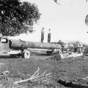 Timber jinker with hollow Iron Bark log from Eungai, being delivered by Thurgood Brothers, to be used as a water trough for cattle. The trough on the right was no longer watertight. `A couple of us took a day and a half making the trough from the log.'(spoken by Wendell Morris 29.6.88 - I swung the axe!) - Austral End near Gladstone, NSW