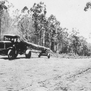 Timber jinker carrying log - Wauchope, NSW