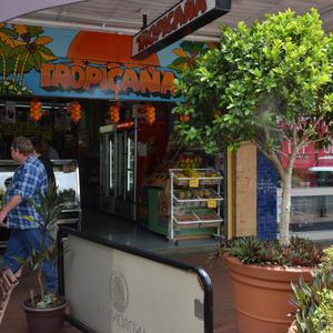 Item 059: Tropicana, Keen Street, Lismore, NSW, 5 November 2013 / photograph by John Immig
