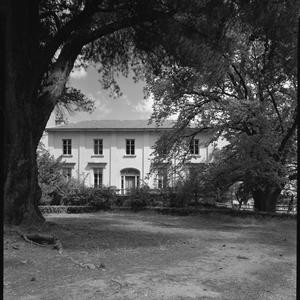 File 01: Tasmania, National Trust, duplicate negatives, [1963] / photographed by Max Dupain