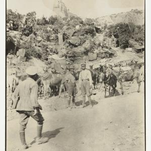[The Australian Imperial Forces in Egypt and at Gallipoli]