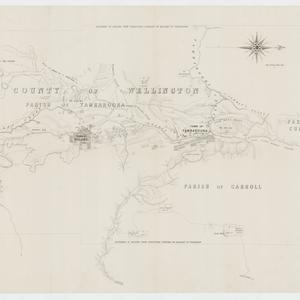 [Parishes of Tambaroora, Carroll, and Cummings, County of Wellington] [cartographic material]