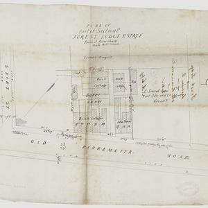 [Forest Lodge subdivision plans] [cartographic material]